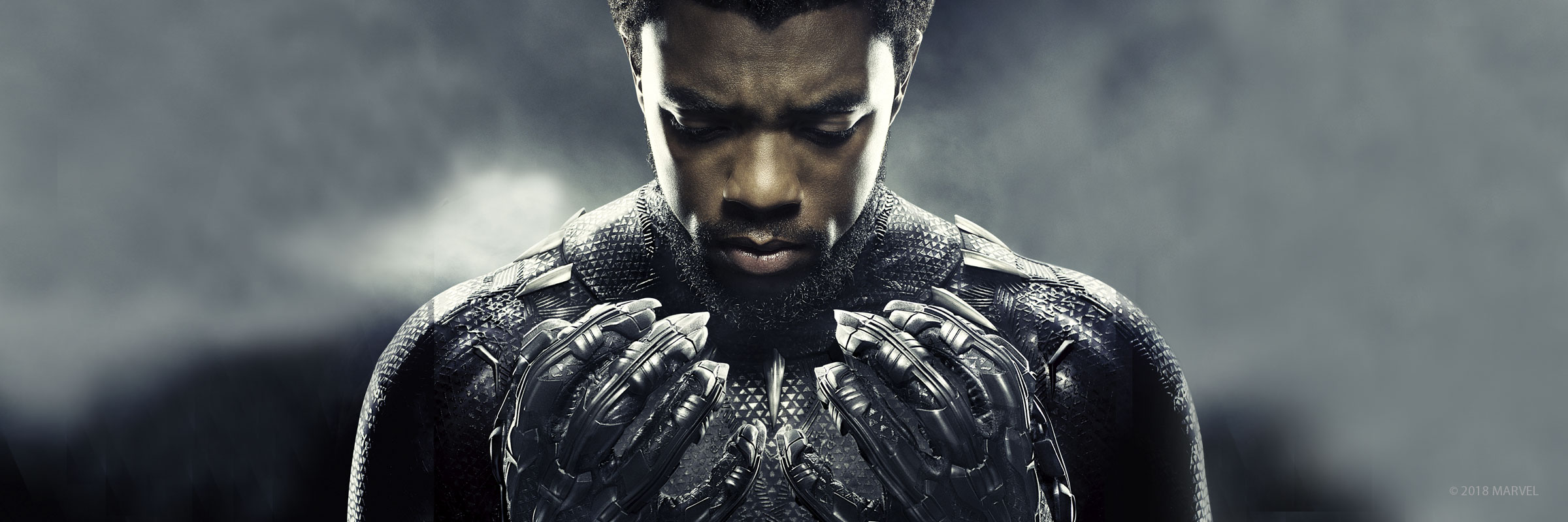 Black-Panther_movie-hero_2400x800_3x1